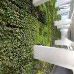 Santander boasts the largest indoor vertical garden in Europe.